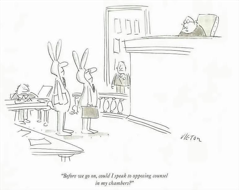 Bunny[1]